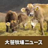 大笹牧場ニュース